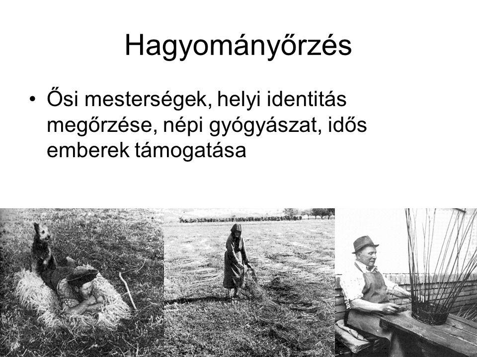 Hagyományőrzés Ősi mesterségek, helyi identitás megőrzése, népi gyógyászat, idős emberek támogatása