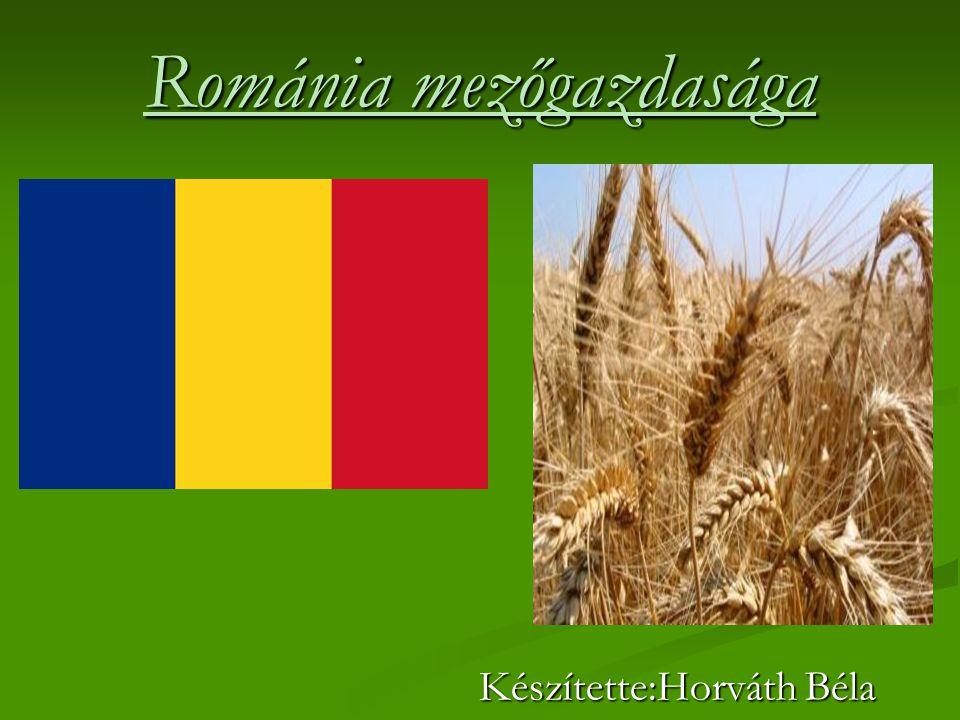 Románia mezőgazdasága Készítette:Horváth Béla