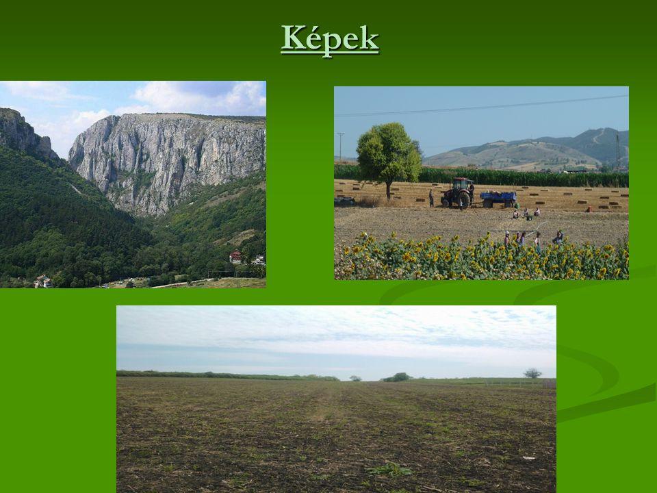 Termesztett növények Legfőbb termények a búza és a kukorica Legfőbb termények a búza és a kukorica Hűvösebb helyeken burgonyát termesztenek Hűvösebb helyeken burgonyát termesztenek Melegebb dombvidékeken szőlőt >>>> Jelentős bormennyiség Melegebb dombvidékeken szőlőt >>>> Jelentős bormennyiség Továbbá termesztenek még cukorrépát,napraforgót és kendert Továbbá termesztenek még cukorrépát,napraforgót és kendert
