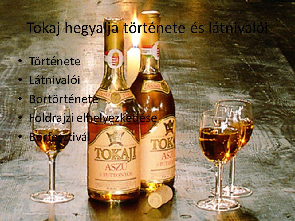 Tokaj hegyalja története és látnivalói Története Látnivalói Bortörténete Földrajzi elhelyezkedése Borfesztivál