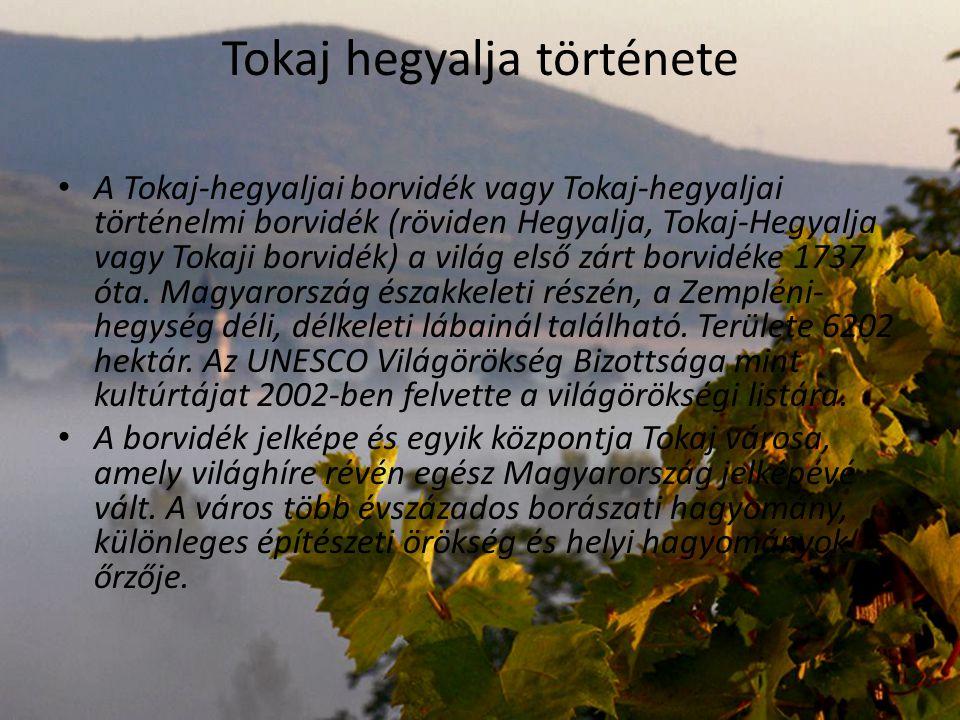Tokaj hegyalja látnivalói Abaújszántó Bodrogkeresztúr Monok Olaszliszka Sárospatak Sátoraljaújhely Széphalom Szerencs Tarca Tállya Tolcsva