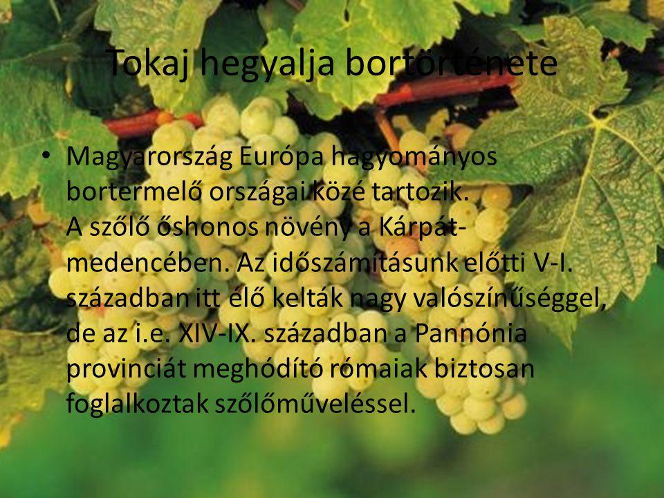 Tokaj hegyalja bortörténete Magyarország Európa hagyományos bortermelő országai közé tartozik.