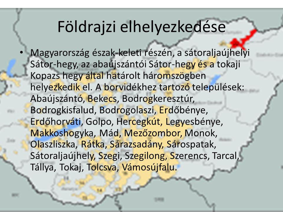 Borfesztivál A Széchenyi téren 156 kiállítónak 1000 m 2, a Klauzál téren 41 árusnak 224 m 2 faházat építenek a szakemberek, hogy a május 18-i nyitásra minden készen álljon – tudtuk meg Licsicsányi Ilonától, a rendezvénysorozatot szervező Szegedi Városkép Kft.