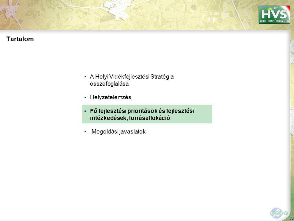 58 Tartalom ▪A Helyi Vidékfejlesztési Stratégia összefoglalása ▪Helyzetelemzés ▪Fő fejlesztési prioritások és fejlesztési intézkedések, forrásallokáci