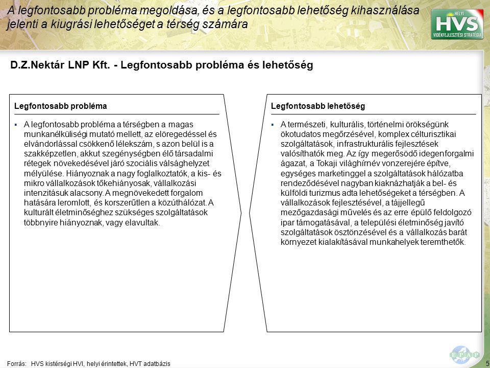 5 D.Z.Nektár LNP Kft. - Legfontosabb probléma és lehetőség A legfontosabb probléma megoldása, és a legfontosabb lehetőség kihasználása jelenti a kiugr