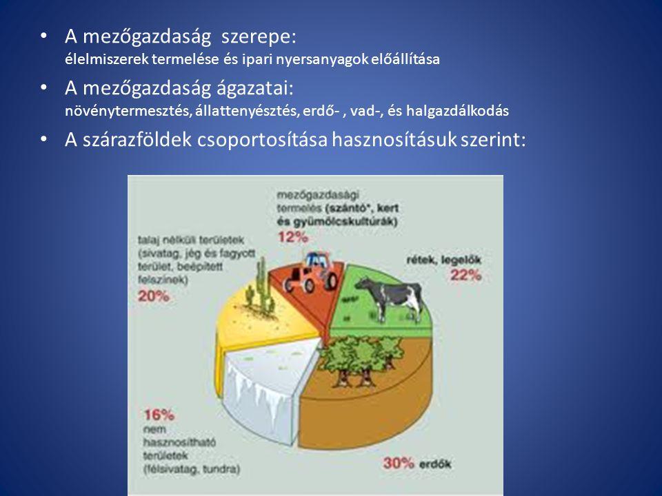 A mezőgazdaság szerepe: élelmiszerek termelése és ipari nyersanyagok előállítása A mezőgazdaság ágazatai: növénytermesztés, állattenyésztés, erdő-, va