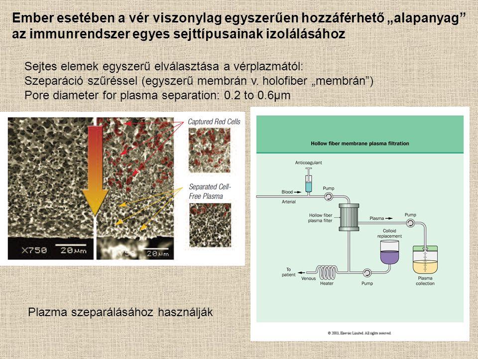 """Sejtes elemek egyszerű elválasztása a vérplazmától: Szeparáció szűréssel (egyszerű membrán v. holofiber """"membrán"""") Pore diameter for plasma separation"""