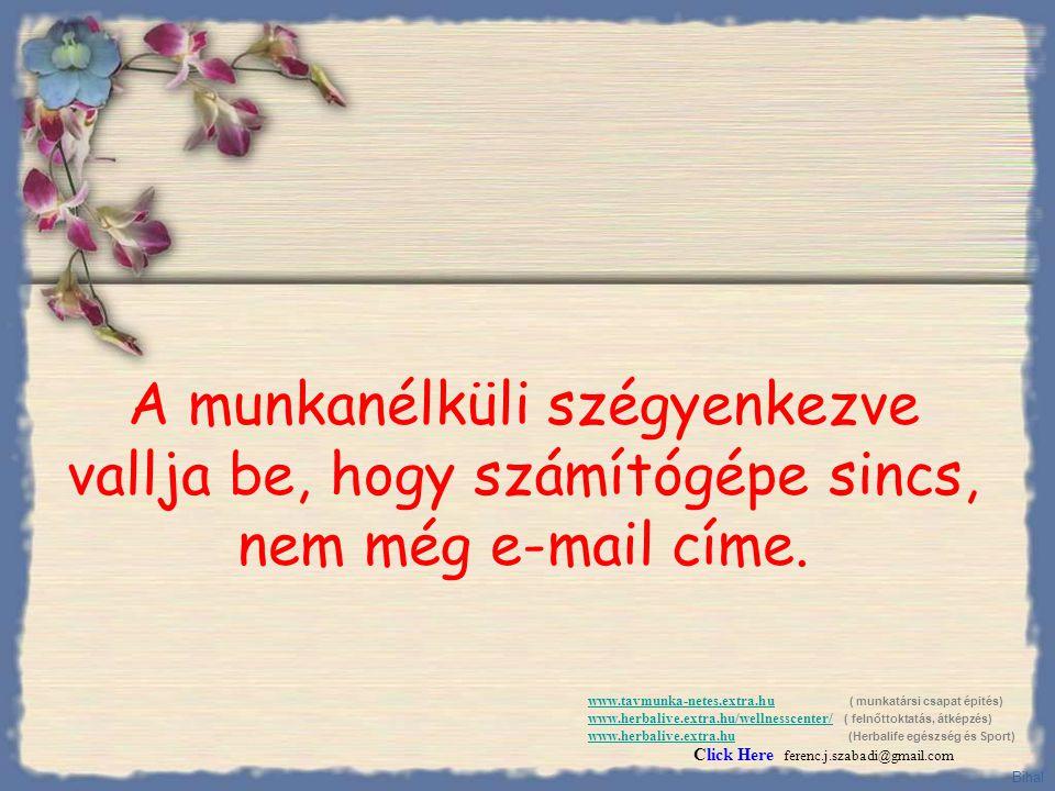 Végül azt mondja: - Fel van véve, kérem adja meg az e-mail címét, hogy elküldhessük Önnek a munkaszerződést.