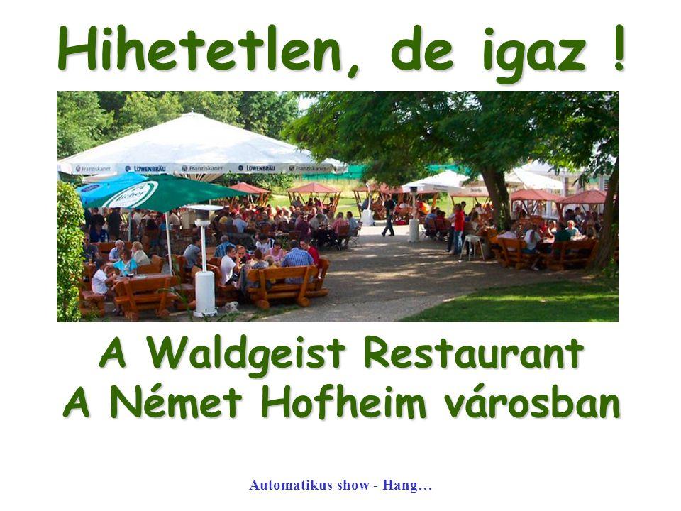 Hihetetlen, de igaz ! A Waldgeist Restaurant A Német Hofheim városban Automatikus show - Hang…