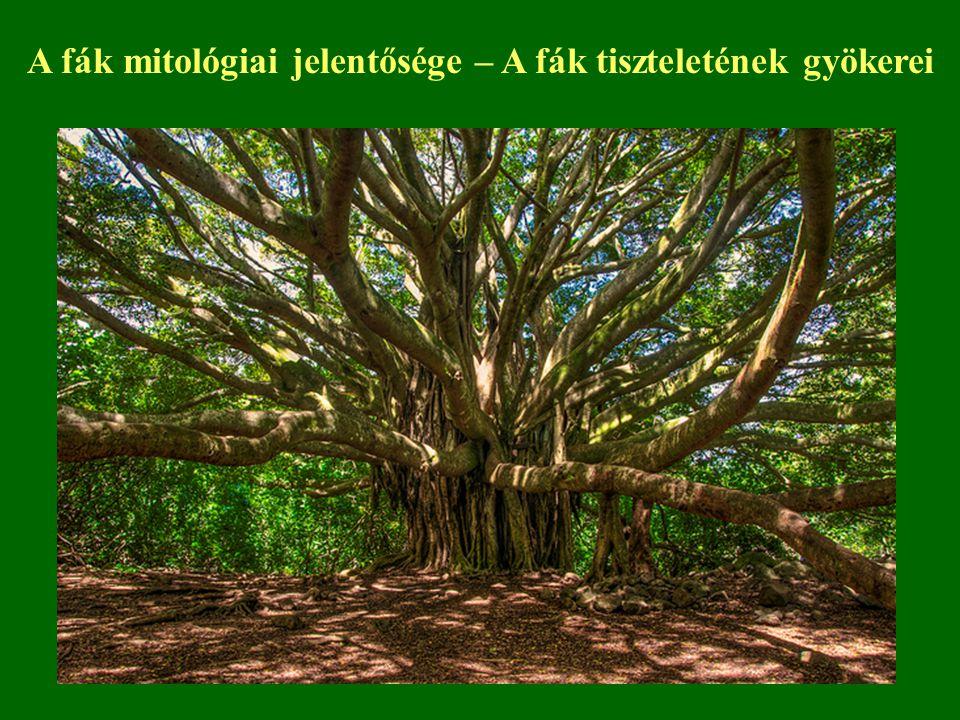 """A hidatsza indiánok az tartották a nyárfa árnyéklelkéről, hogy segíthet vállalkozásaikhoz A Yasava szigetek lakója megkérdezte a kókuszdiót, mielőtt megette: """"Megehetlek, főnök? A borneói dajakok visszaállították és feldíszítették a szél által kidöntött fát, hogy megörvendeztessék Az amerikai indiánok régen csak azt a fát használták fel ami magától kidőlt A Kalevala fái is emberi hangon szólnak Így szól a mesebeli körtefa a magyar népmesében: """"Leányocska gyere, tisztíts le engem a száraz ágaktól."""