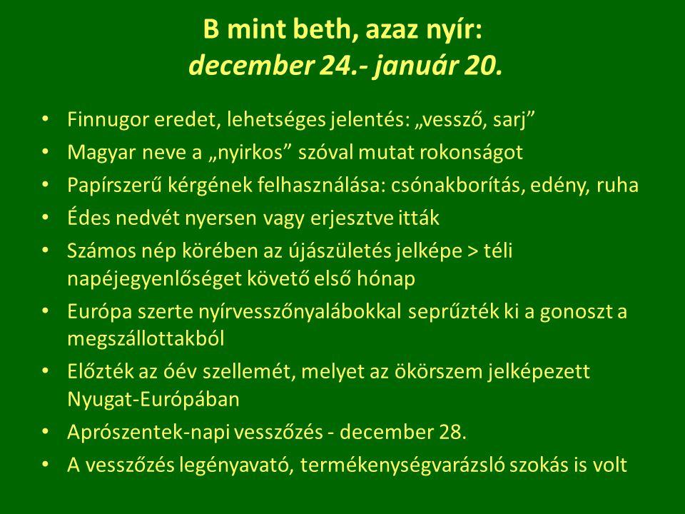 """B mint beth, azaz nyír: december 24.- január 20. Finnugor eredet, lehetséges jelentés: """"vessző, sarj"""" Magyar neve a """"nyirkos"""" szóval mutat rokonságot"""