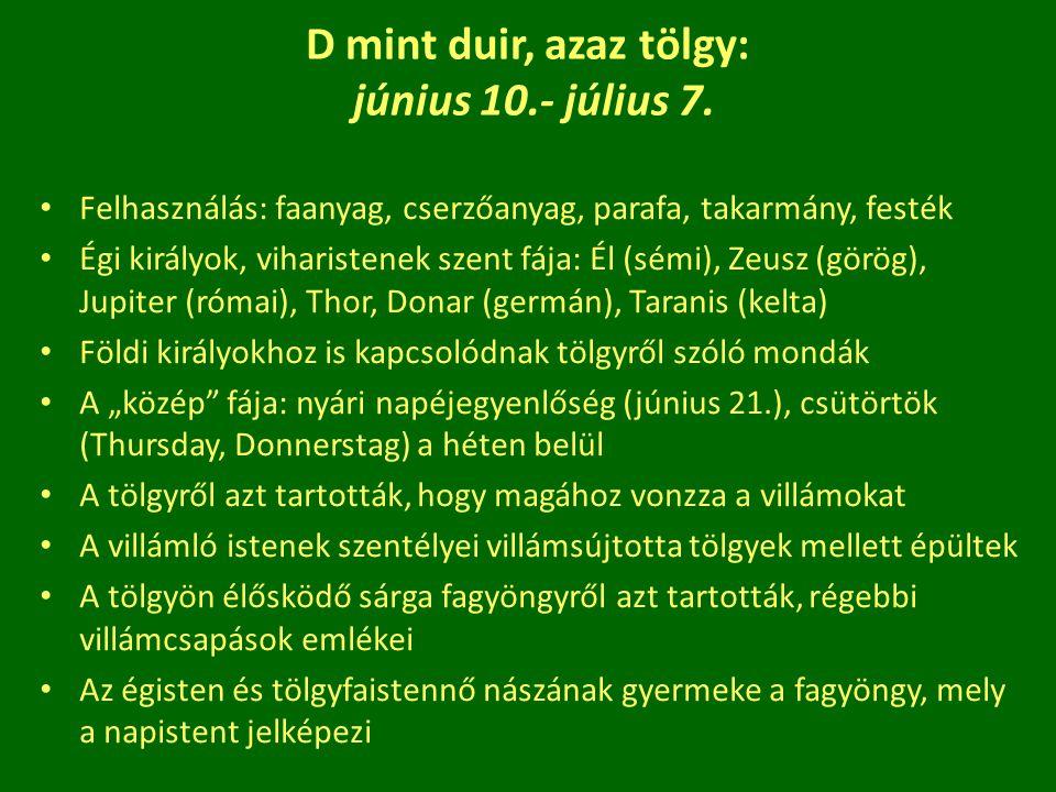 D mint duir, azaz tölgy: június 10.- július 7. Felhasználás: faanyag, cserzőanyag, parafa, takarmány, festék Égi királyok, viharistenek szent fája: Él