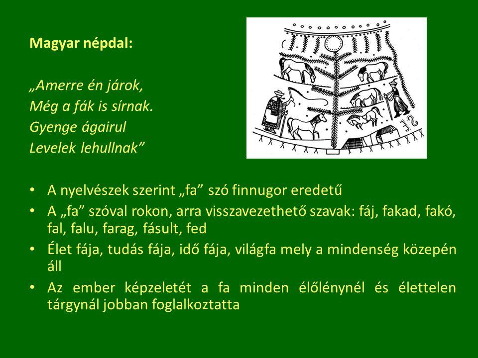 """Egyes történetek szerint bizonyos hősök haláluk után fa alakban élnek tovább: Küparisszosz > ciprus, Ozirisz > erikafa, gabonakalászok, Dionüszosz vére > gránátalmafa A """"Megölt aranyhajú ikrek meséje: testvérek > két aranyalmafa """"Jávorfa mesék: leány > juharfa > hangszer """"Ördögszerető mese: leány > virág > leány A fák sírra ültetése azt a célt is szolgálhatja, hogy legyen hol lakni a halott szellemének Fák házasításának hagyománya: Mezopotámia – datolya A faszellemektől betegségek elmulasztását is várták Szertartások segítségével a betegséget átruházták a fára Bolgár hiedelem: ha a beteg napkeltekor körbefut egy fűzfát és a mágikus szöveget elmondja megszabadul a láztól."""