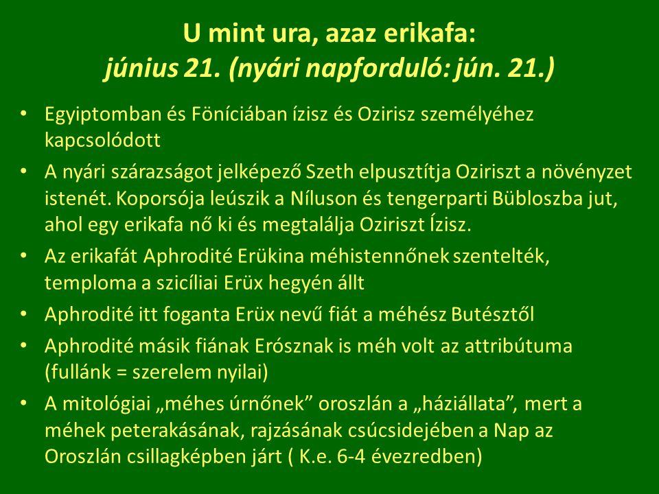 U mint ura, azaz erikafa: június 21. (nyári napforduló: jún. 21.) Egyiptomban és Föníciában ízisz és Ozirisz személyéhez kapcsolódott A nyári szárazsá