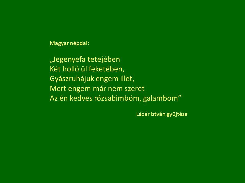 """Magyar népdal: """"Jegenyefa tetejében Két holló ül feketében, Gyászruhájuk engem illet, Mert engem már nem szeret Az én kedves rózsabimbóm, galambom"""" Lá"""