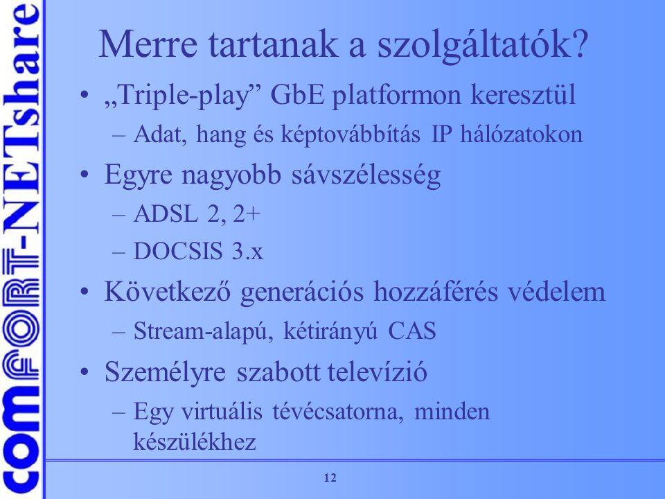 """12 Merre tartanak a szolgáltatók? """"Triple-play"""" GbE platformon keresztül –Adat, hang és képtovábbítás IP hálózatokon Egyre nagyobb sávszélesség –ADSL"""