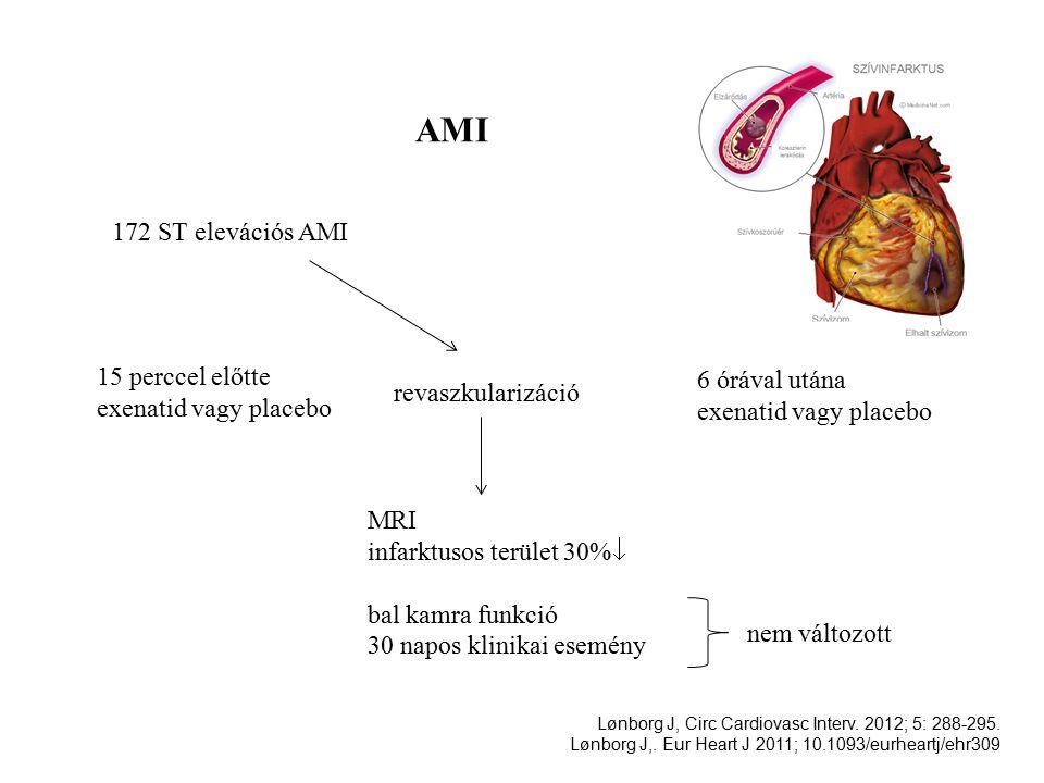 AMI 172 ST elevációs AMI revaszkularizáció 15 perccel előtte exenatid vagy placebo 6 órával utána exenatid vagy placebo MRI infarktusos terület 30%  bal kamra funkció 30 napos klinikai esemény nem változott Lønborg J, Circ Cardiovasc Interv.