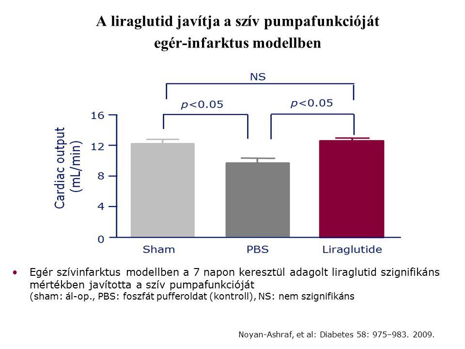 A liraglutid javítja a szív pumpafunkcióját egér-infarktus modellben Egér szívinfarktus modellben a 7 napon keresztül adagolt liraglutid szignifikáns mértékben javította a szív pumpafunkcióját (sham: ál-op., PBS: foszfát pufferoldat (kontroll), NS: nem szignifikáns Noyan-Ashraf, et al: Diabetes 58: 975–983.