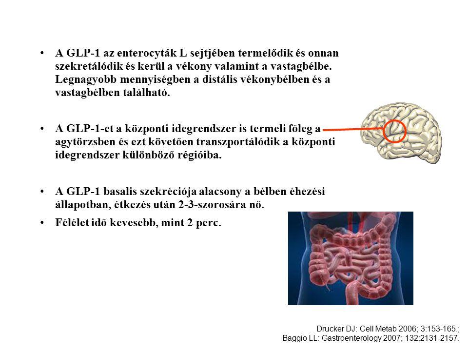A GLP-1 az enterocyták L sejtjében termelődik és onnan szekretálódik és kerül a vékony valamint a vastagbélbe.