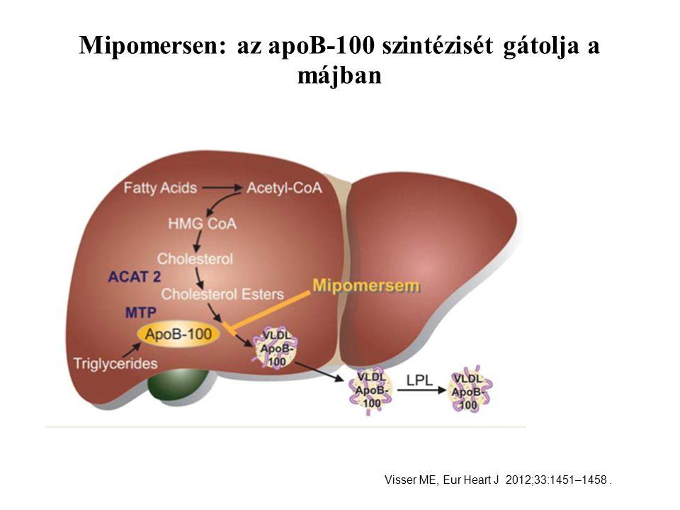 Mipomersen: az apoB-100 szintézisét gátolja a májban Visser ME, Eur Heart J 2012;33:1451–1458.