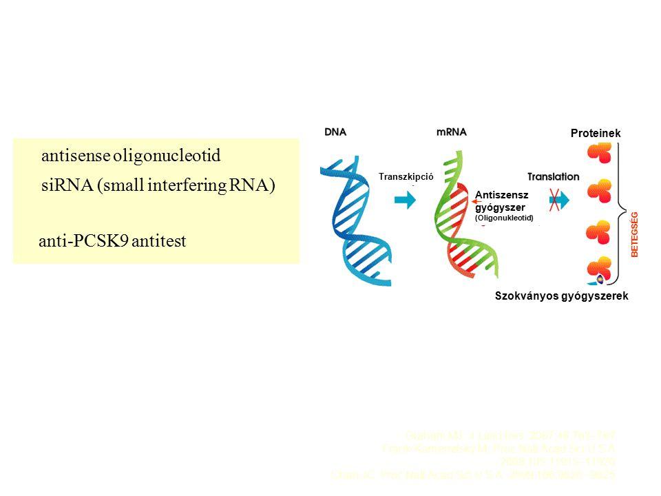 antisense oligonucleotid siRNA (small interfering RNA) anti-PCSK9 antitest Graham MJ: J Lipid Res.