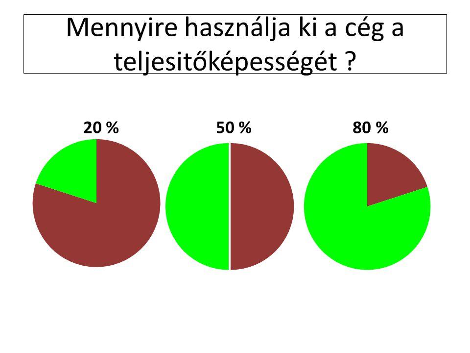 Mennyire használja ki a cég a teljesitőképességét 20 % 50 % 80 %