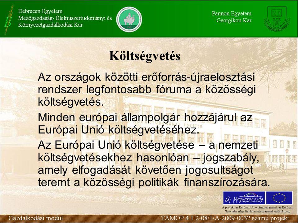 Költségvetés Az országok közötti erőforrás-újraelosztási rendszer legfontosabb fóruma a közösségi költségvetés.