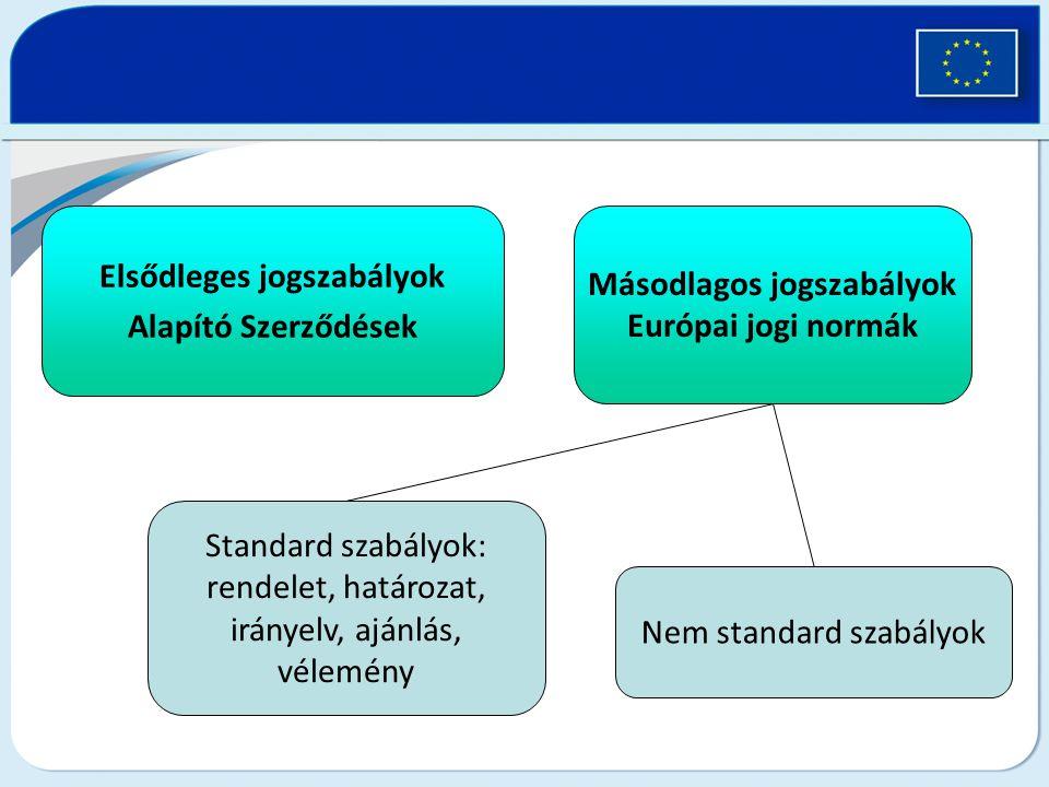 Elsődleges jogszabályok Alapító Szerződések Másodlagos jogszabályok Európai jogi normák Standard szabályok: rendelet, határozat, irányelv, ajánlás, vé