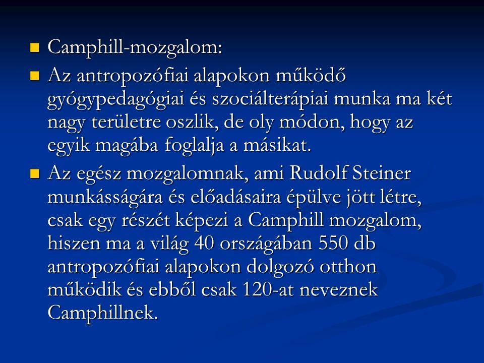 Camphill-mozgalom: Camphill-mozgalom: Az antropozófiai alapokon működő gyógypedagógiai és szociálterápiai munka ma két nagy területre oszlik, de oly m