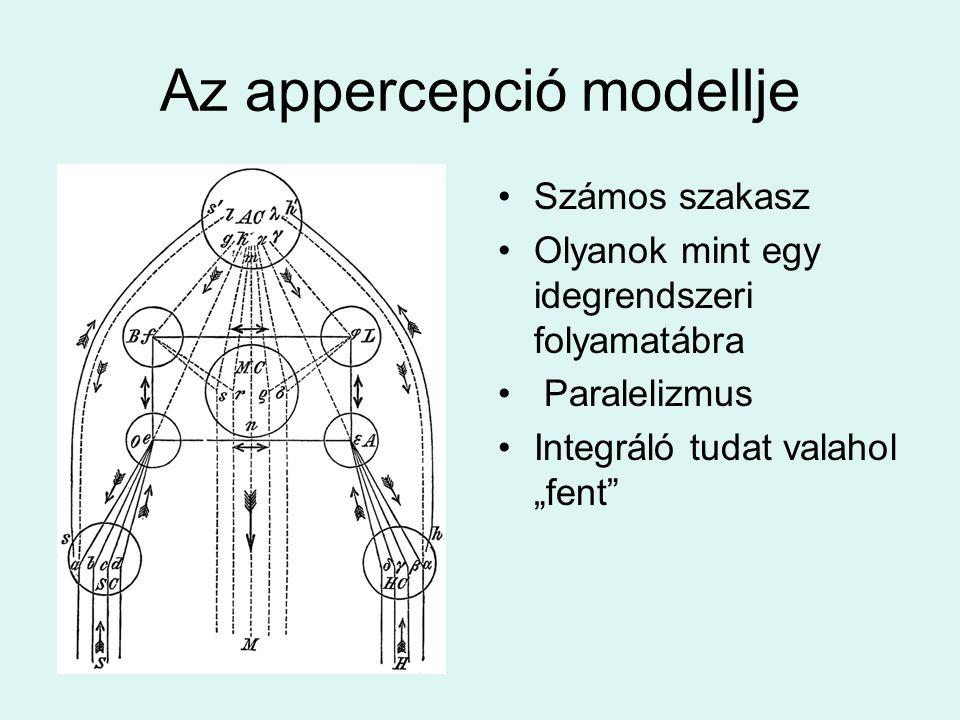 """Az appercepció modellje Számos szakasz Olyanok mint egy idegrendszeri folyamatábra Paralelizmus Integráló tudat valahol """"fent"""