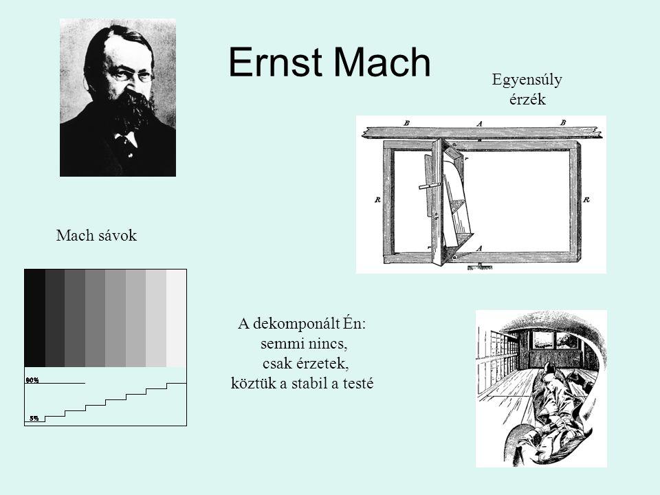 Ernst Mach Mach sávok Egyensúly érzék A dekomponált Én: semmi nincs, csak érzetek, köztük a stabil a testé
