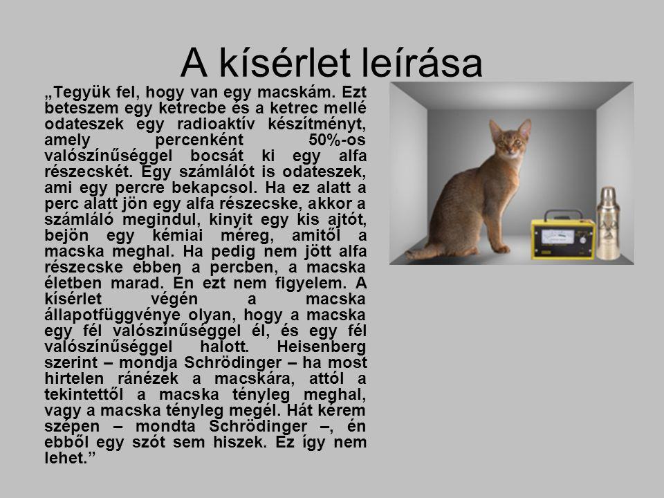 """A kísérlet leírása """"Tegyük fel, hogy van egy macskám. Ezt beteszem egy ketrecbe és a ketrec mellé odateszek egy radioaktív készítményt, amely percenké"""