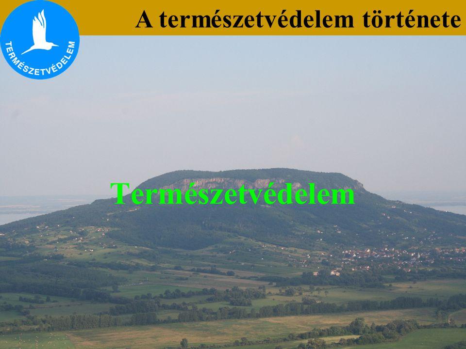 A természetvédelem története Lónyai erdő Csepleszmeggy (Cerasus fruticosa) Csepleszmeggy (Cerasus fruticosa) Tétényi-fennsík 1913- Bern (A természetvédelem nemzetközi alapokra helyezése) A gyakorlati, mindennapi – bár szerény – eredményeken kívül körvonalazódott egy természetvédelmi törvény megalkotásának a gondolata is.