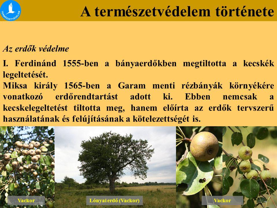 A természetvédelem története Az erdők védelme I. Ferdinánd 1555-ben a bányaerdőkben megtiltotta a kecskék legeltetését. Miksa király 1565-ben a Garam
