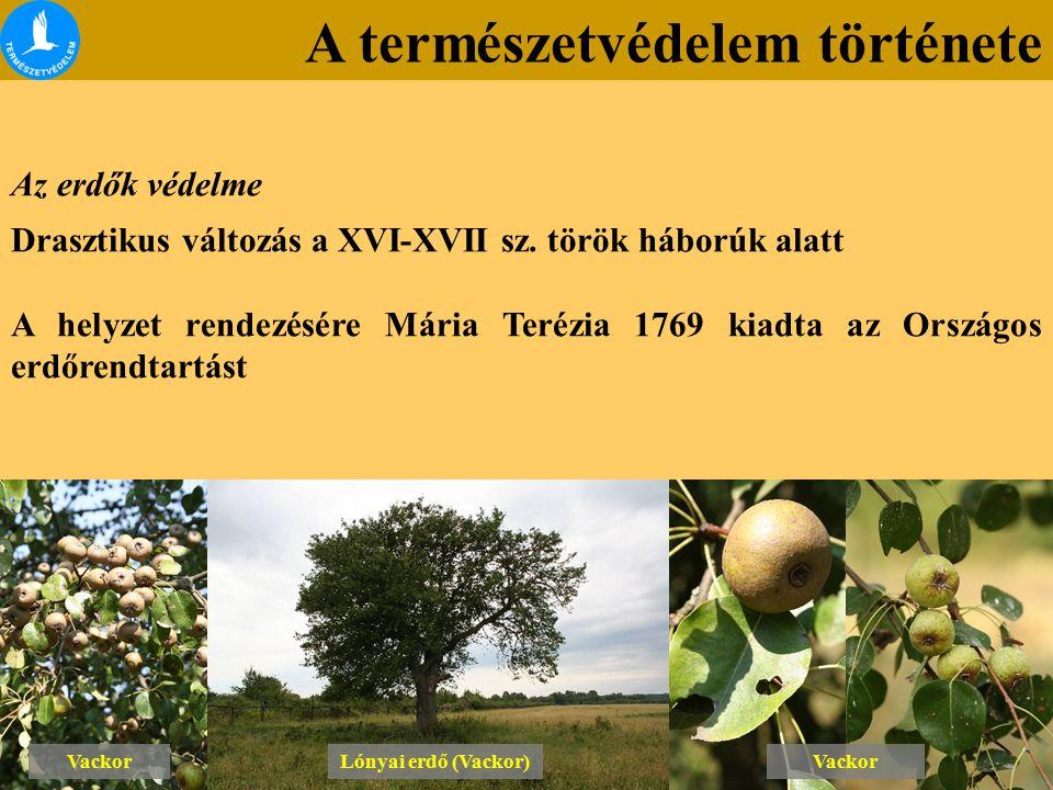 A természetvédelem története Az erdők védelme Drasztikus változás a XVI-XVII sz. török háborúk alatt A helyzet rendezésére Mária Terézia 1769 kiadta a