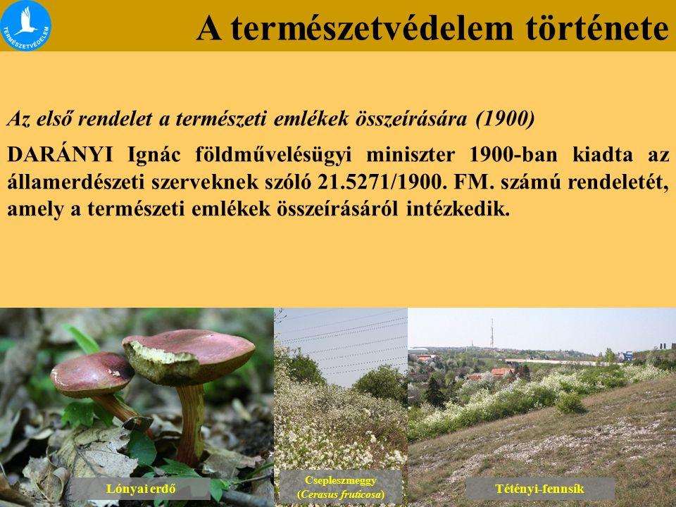 A természetvédelem története Lónyai erdő Csepleszmeggy (Cerasus fruticosa) Csepleszmeggy (Cerasus fruticosa) Tétényi-fennsík Az első rendelet a termés