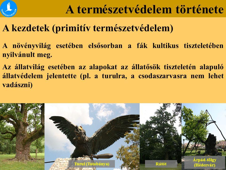 A természetvédelem története A kezdetek (primitív természetvédelem) A növényvilág esetében elsősorban a fák kultikus tiszteletében nyilvánult meg. Az