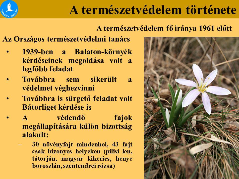 Az Országos természetvédelmi tanács 1939-ben a Balaton-környék kérdéseinek megoldása volt a legfőbb feladat Továbbra sem sikerült a védelmet véghezvinni Továbbra is sürgető feladat volt Bátorliget kérdése is A védendő fajok megállapítására külön bizottság alakult: –30 növényfajt mindenhol, 43 fajt csak bizonyos helyeken (pilisi len, tátorján, magyar kikerics, henye boroszlán, szentendrei rózsa) A természetvédelem fő iránya 1961 előtt A természetvédelem története