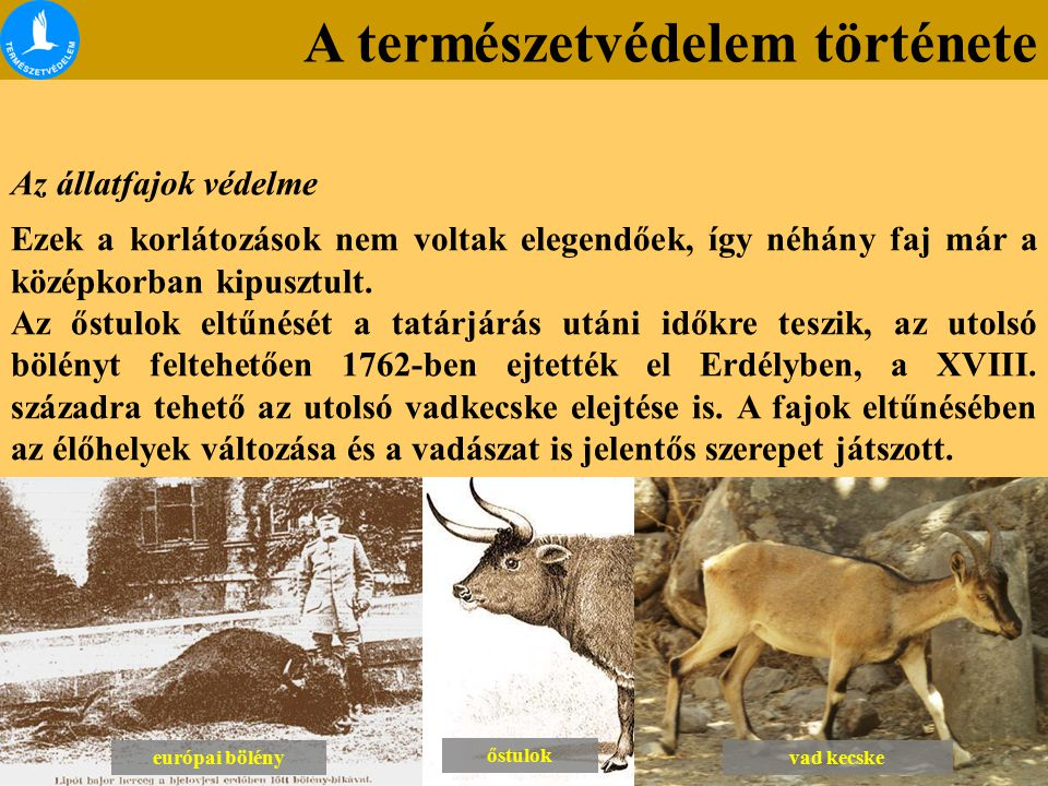 A természetvédelem története Az állatfajok védelme Ezek a korlátozások nem voltak elegendőek, így néhány faj már a középkorban kipusztult. Az őstulok