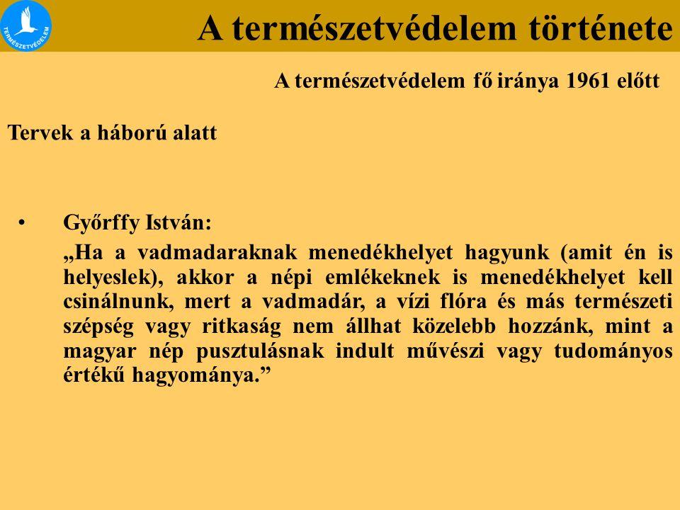 """Tervek a háború alatt Győrffy István: """"Ha a vadmadaraknak menedékhelyet hagyunk (amit én is helyeslek), akkor a népi emlékeknek is menedékhelyet kell"""