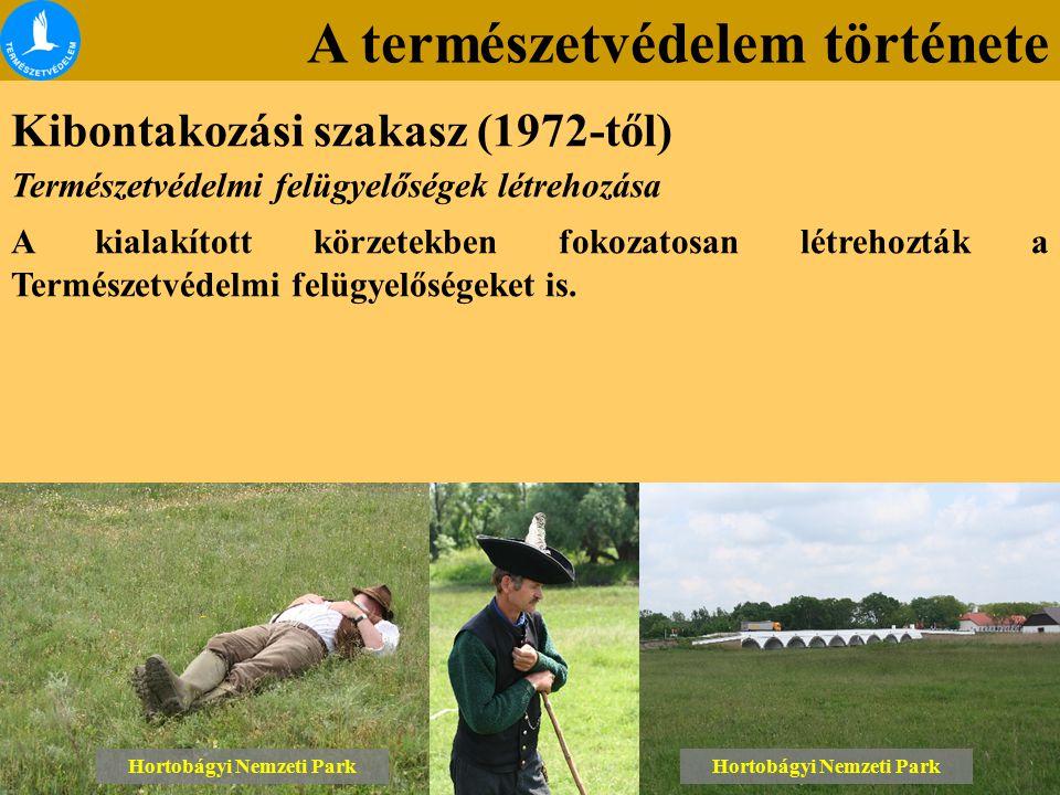 A természetvédelem története Kibontakozási szakasz (1972-től) Lónyai erdő Tétényi-fennsík Hortobágyi Nemzeti Park Természetvédelmi felügyelőségek létr