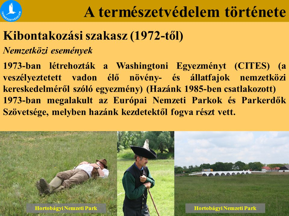 A természetvédelem története Kibontakozási szakasz (1972-től) Lónyai erdő Tétényi-fennsík Hortobágyi Nemzeti Park Nemzetközi események 1973-ban létrehozták a Washingtoni Egyezményt (CITES) (a veszélyeztetett vadon élő növény- és állatfajok nemzetközi kereskedelméről szóló egyezmény) (Hazánk 1985-ben csatlakozott) 1973-ban megalakult az Európai Nemzeti Parkok és Parkerdők Szövetsége, melyben hazánk kezdetektől fogva részt vett.