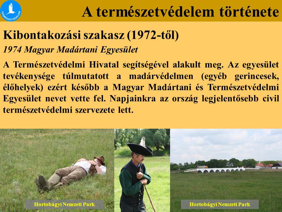 A természetvédelem története Kibontakozási szakasz (1972-től) Lónyai erdő Tétényi-fennsík Hortobágyi Nemzeti Park 1974 Magyar Madártani Egyesület A Természetvédelmi Hivatal segítségével alakult meg.