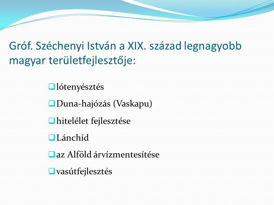 Gróf. Széchenyi István a XIX. század legnagyobb magyar területfejlesztője:  lótenyésztés  Duna-hajózás (Vaskapu)  hitelélet fejlesztése  Lánchíd 