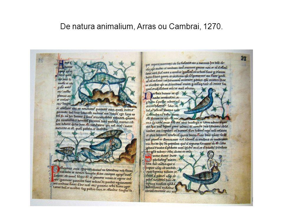 De natura animalium, Arras ou Cambrai, 1270.