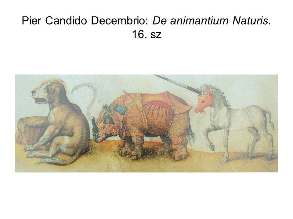 Pier Candido Decembrio: De animantium Naturis. 16. sz