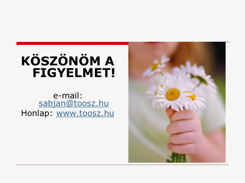 KÖSZÖNÖM A FIGYELMET! e-mail: sabjan@toosz.hu sabjan@toosz.hu Honlap: www.toosz.huwww.toosz.hu