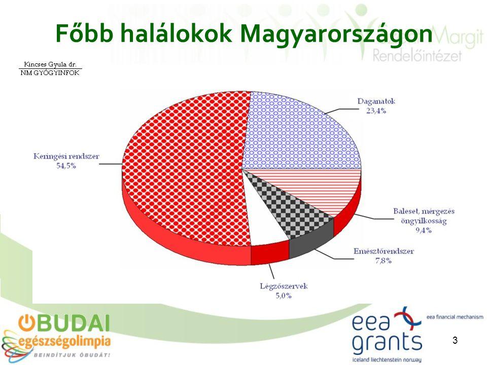3 Főbb halálokok Magyarországon