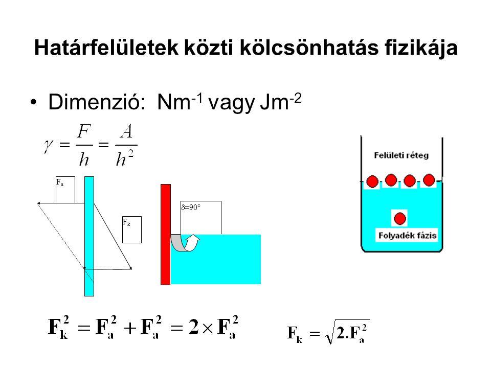 A kohéziós és adhéziós erők nem egyenlők Hidrofób (higany  =435 mN/m és Hidrofil (víz  = 72.5 mN/m) FkFk FaFa  >90° FaFa FkFk  < 90°