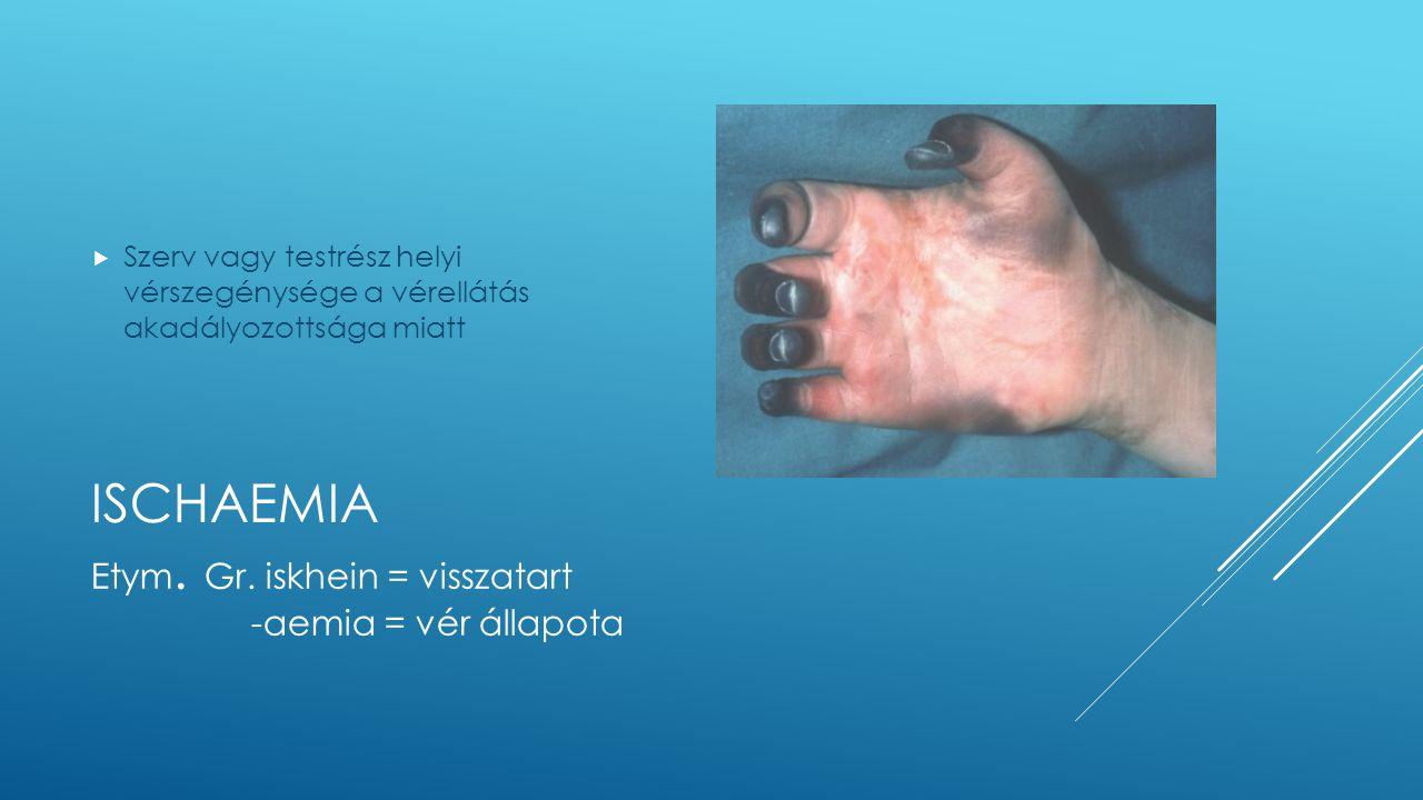 ISCHAEMIA  Szerv vagy testrész helyi vérszegénysége a vérellátás akadályozottsága miatt Etym. Gr. iskhein = visszatart -aemia = vér állapota
